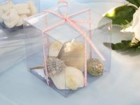 Clear Square 3 x 3 cup cake/favor box.